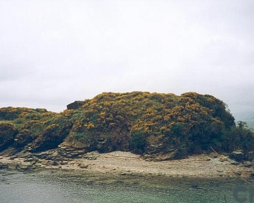 Imagen del monumento Castillo de San Carlos