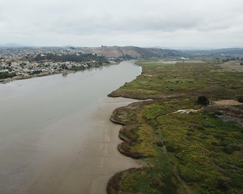 Imagen del monumento Humedal Río Maipo