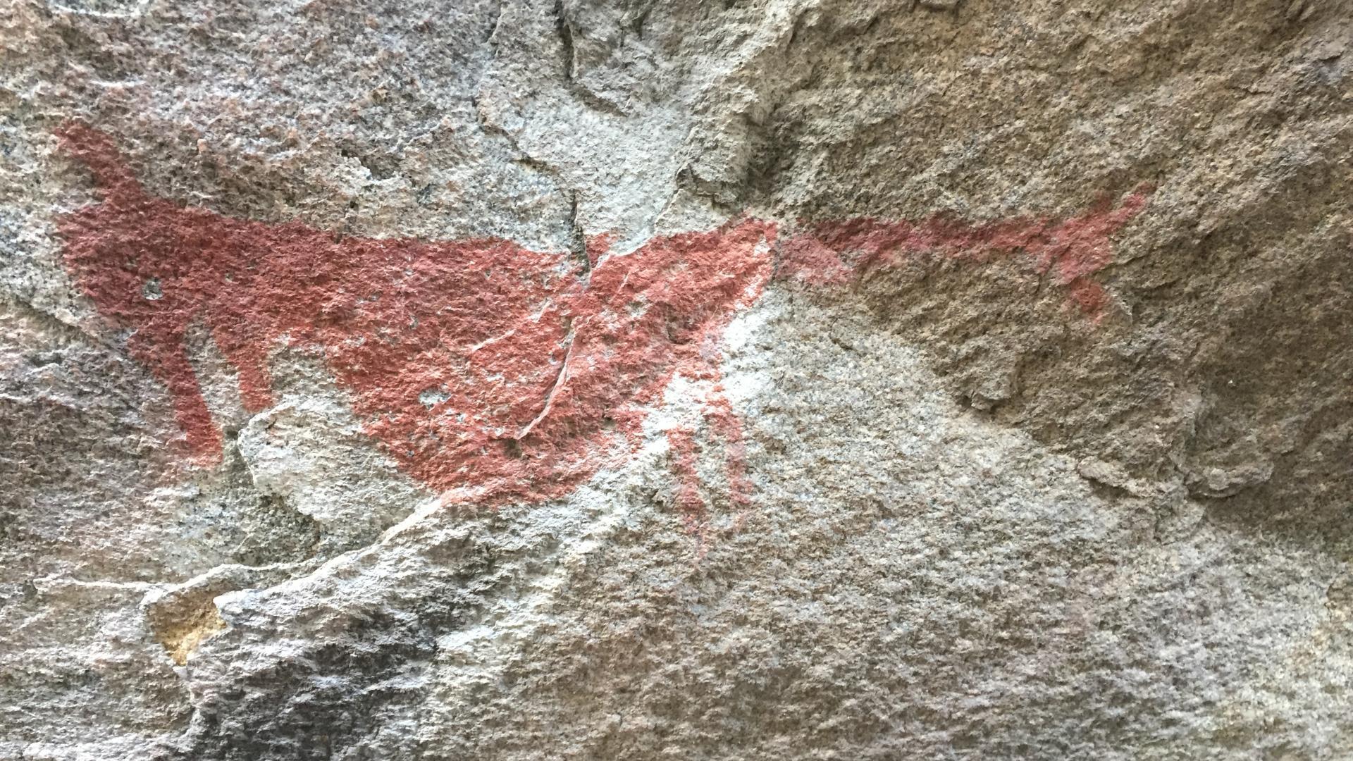 """Imagen de """"Conectemos con los monumentos"""" llega a Aysén: CMN y Universidad Austral abordarán el patrimonio milenario de la región"""