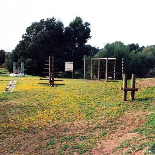 Imagen del monumento Parque hito a Galvarino