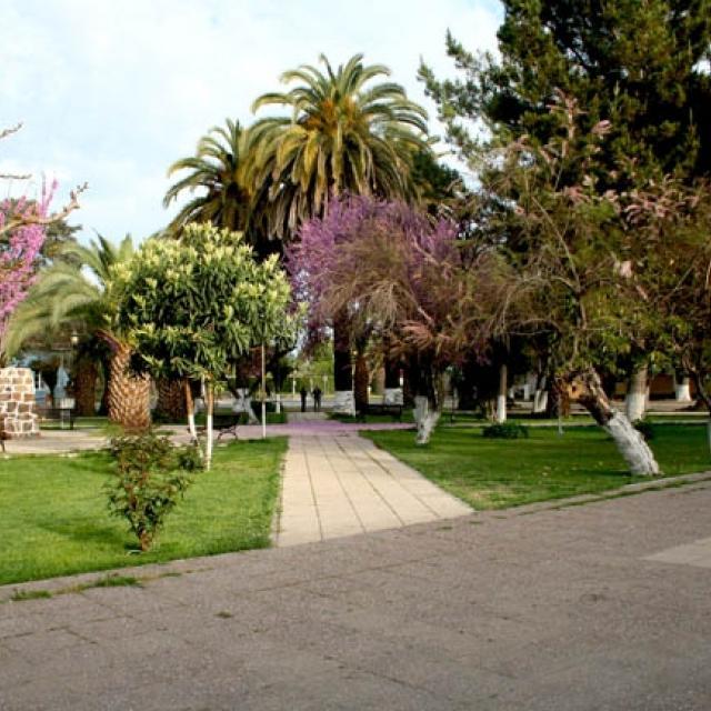 Imagen del monumento Plaza de Guacarhue