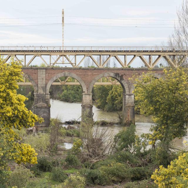 Imagen del monumento Puente sobre el río Pangue