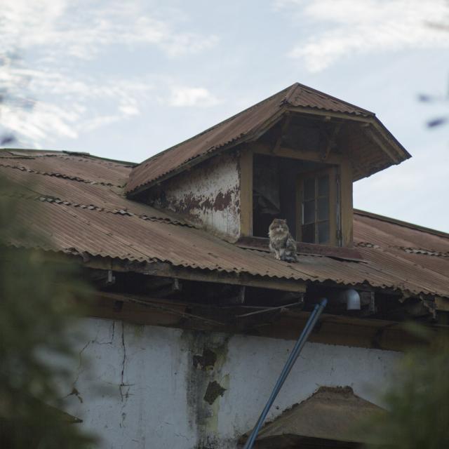 Imagen del monumento Casona El Tabo