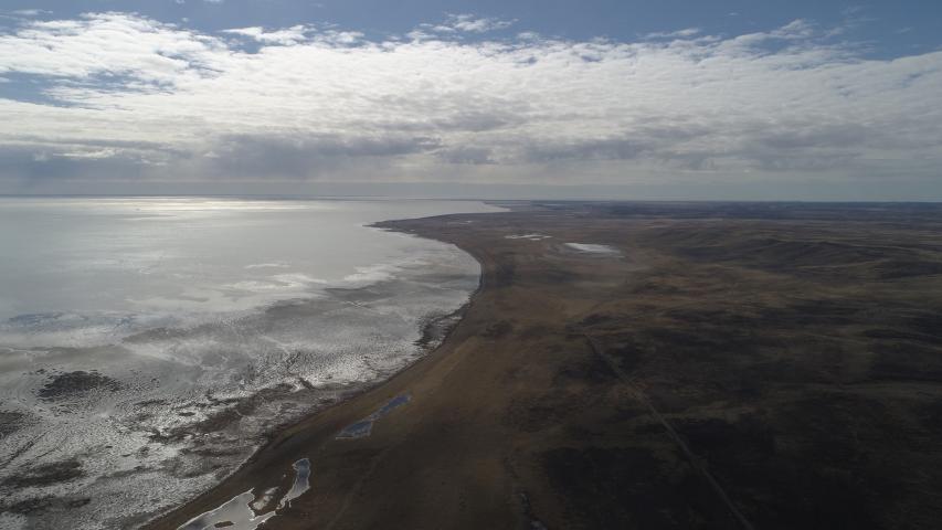 Imagen de Bahía Lomas, en Tierra del Fuego, se convierte en el Santuario de la Naturaleza más austral del país