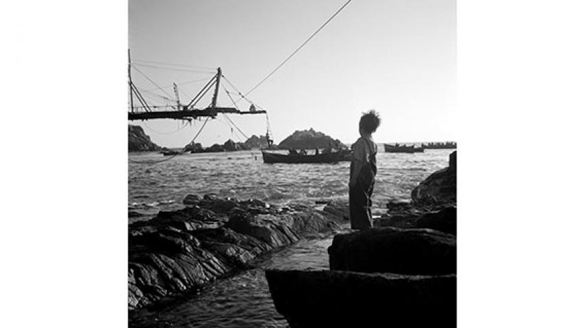 Niño a orillas del mar, 1950