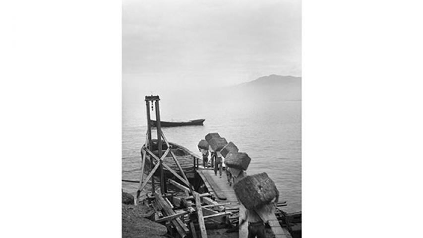 Carga de fardos de pasto, 1947
