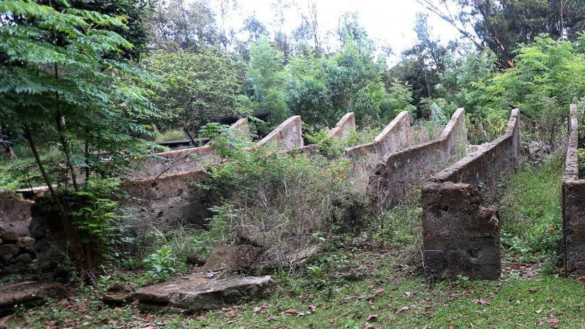 Imagen de Bienes Nacionales destina terreno de 10 hectáreas a Ministerio de Culturas para futuro Museo Antropológico de Rapa Nui