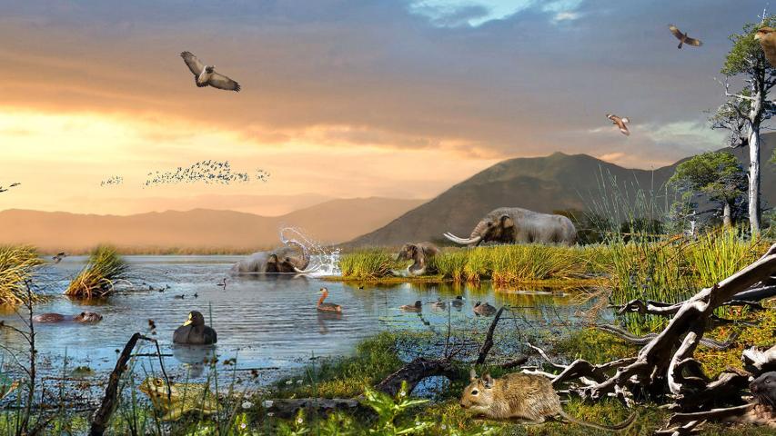 Imagen de Consejo de Monumentos Nacionales revela el potencial paleontológico de la Región de O'Higgins