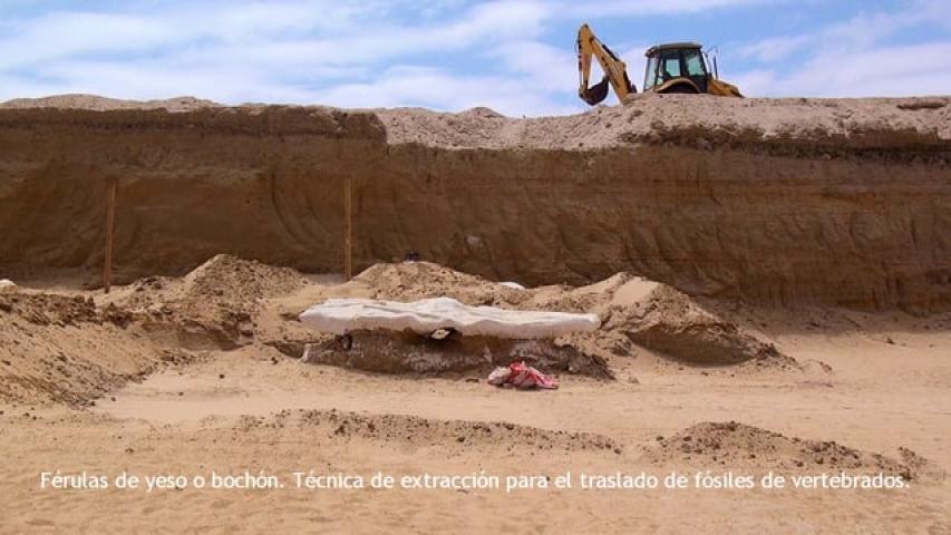Imagen de  Cerro Ballena