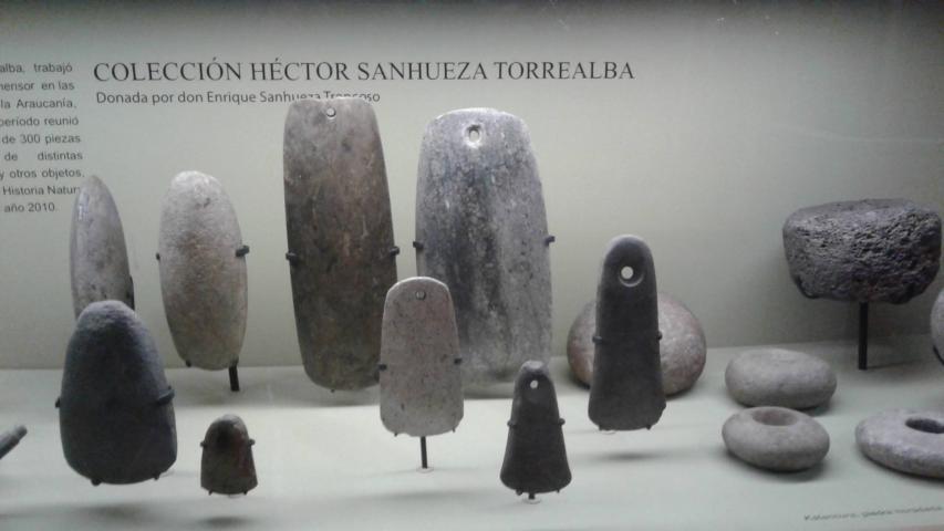 Imagen del monumento Colecciones del Museo de Historia Natural de Concepción, dependiente de la Dirección de Bibliotecas, Archivos y Museos