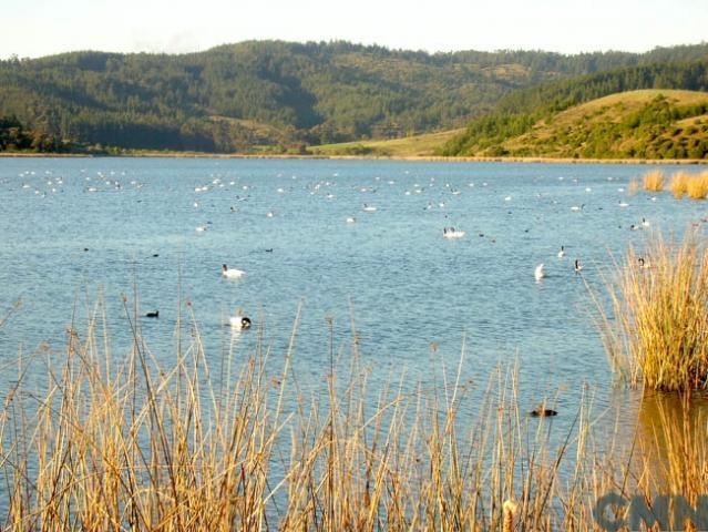 Imagen del monumento Laguna de Torca