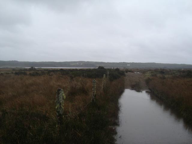 Imagen del monumento Humedales de la Cuenca de Chepu