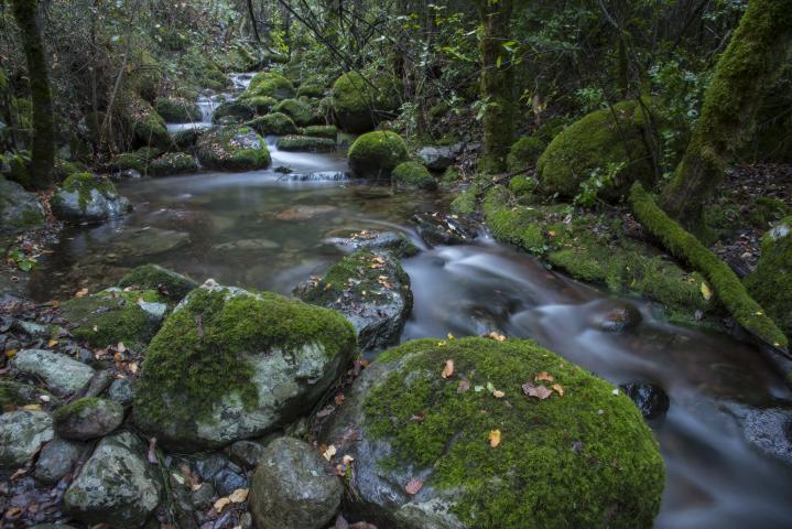 Imagen del monumento Cerro Poqui