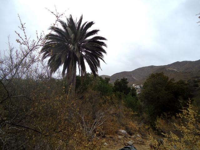 Imagen del monumento Sitio denominado Monte Aranda