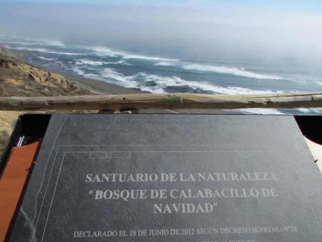Imagen del monumento Bosque de Calabacillo