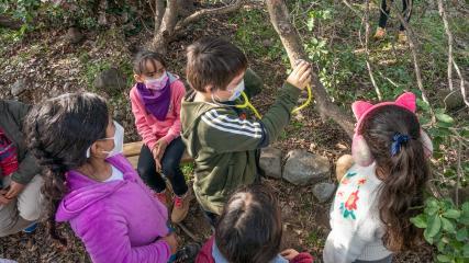 Imagen de ¡Sumamos un nuevo día para disfrutar el Patrimonio Natural! El domingo 15 tres Santuarios de la Naturaleza abrirán gratis