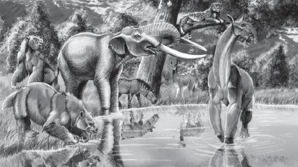 Imagen de CMN revela el potencial paleontológico de la Región Metropolitana: 49% del territorio podría contener fósiles incluso desde el Jurásico